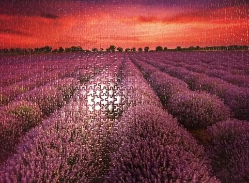 Picture Pretty Puzzle