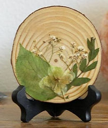 wood cut out1.jpg