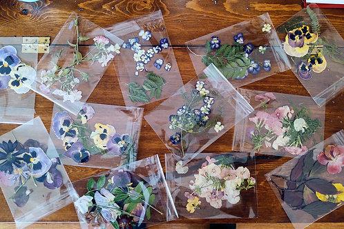 Bags of pressed flowers