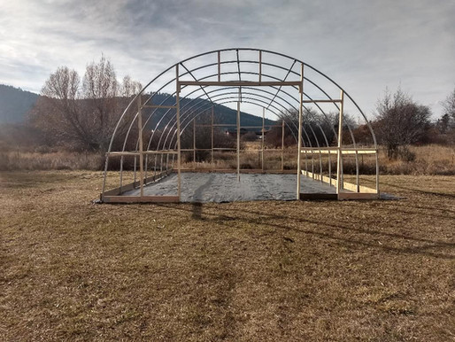 Hoop House in progress