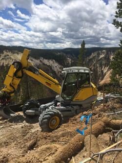 AMC Yellowstone 2017-4