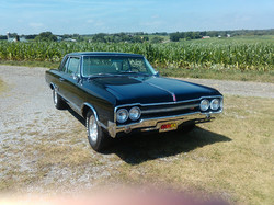 datri65olds442