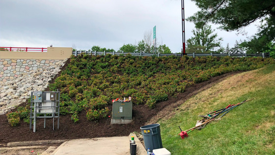 M-20 Landscaping