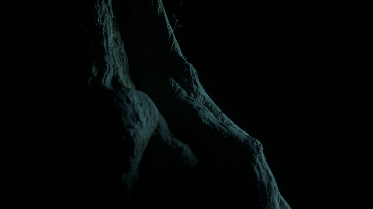 P-7_0058.png
