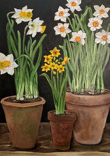 Terracotta Pots.jpg