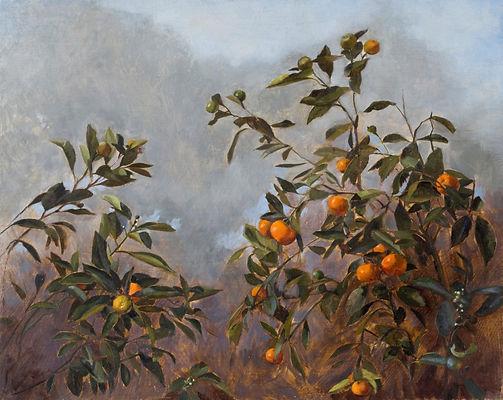Summer cumquats, oil on panel, 41 x 51 c