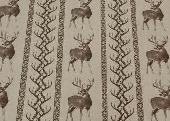 Deer Lodge-01