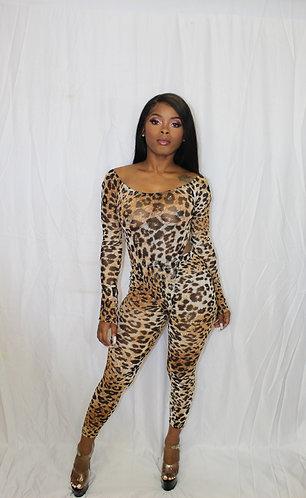 Cheeta Gals