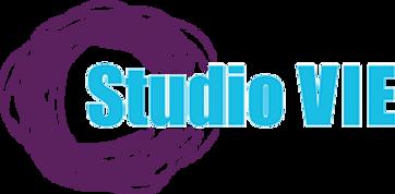 Dance Classes Springfield Missouri, STUDIO VIE, Dance and Fitness,