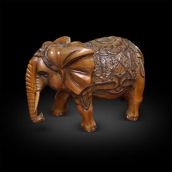 Suar Elefant
