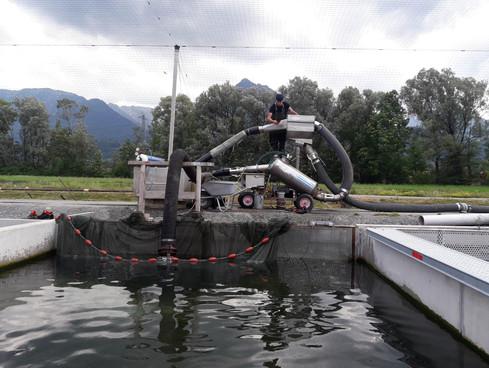 Überwachen der Fischpumpe