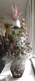 Tree in Window