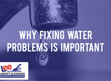 Why Fixing Water Problems is important.