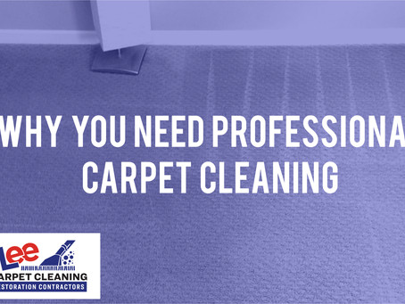Why You Need Professional Carpet Cleaning