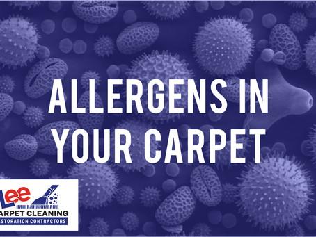 Allergens in Your Carpet