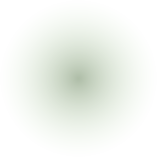 Ellipse 46 (3).png