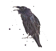 —Pngtree—ink crow_3262618.png
