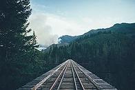 Rail tracks through the woods