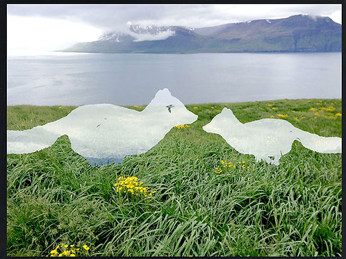 Photomontage Arctic Fox meeting