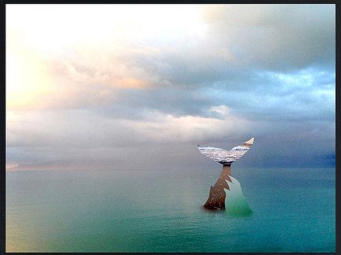 Photomontage Humpback Whale
