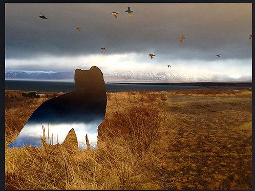 Photomontage Arctic Fox mountain