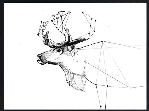 Geometrical reindeer