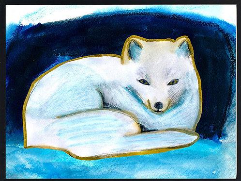 Relaxing arctic fox
