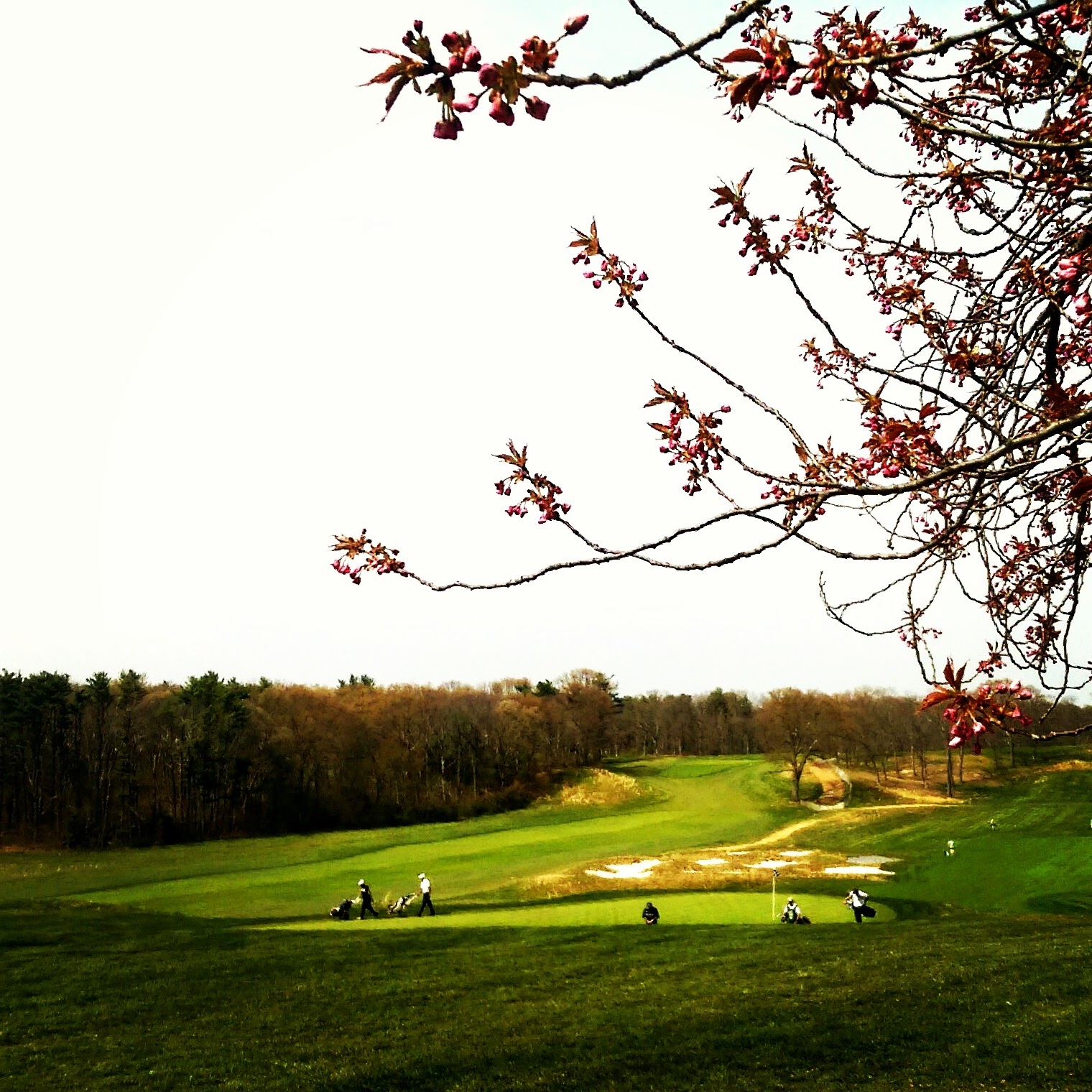Earth Day at Bethpage