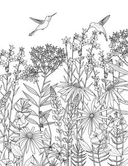 Pollinator for Audubon