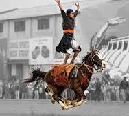 horse10.jpg