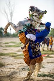 Nihang on Horse back.jpg