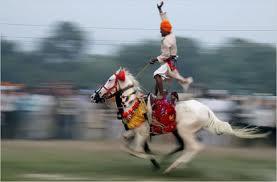 horse back rider.jpg