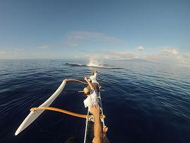 South Maui Outrigger Canoe & Whale Watch (seasonal)