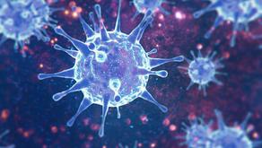 History of the Virus