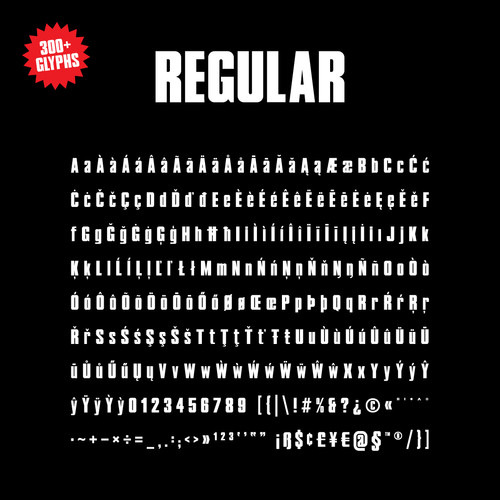 LE-MANS-REGULAR