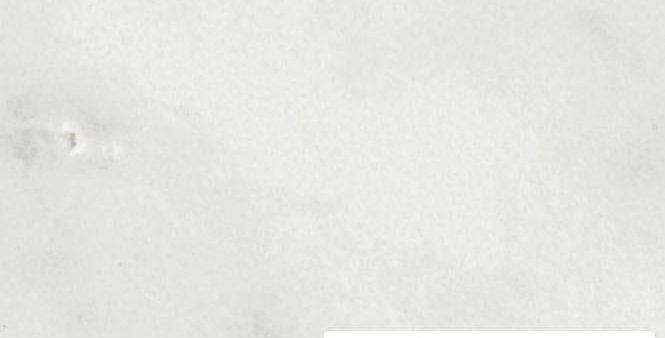 Bianco Carrara, Stärke: 2cm