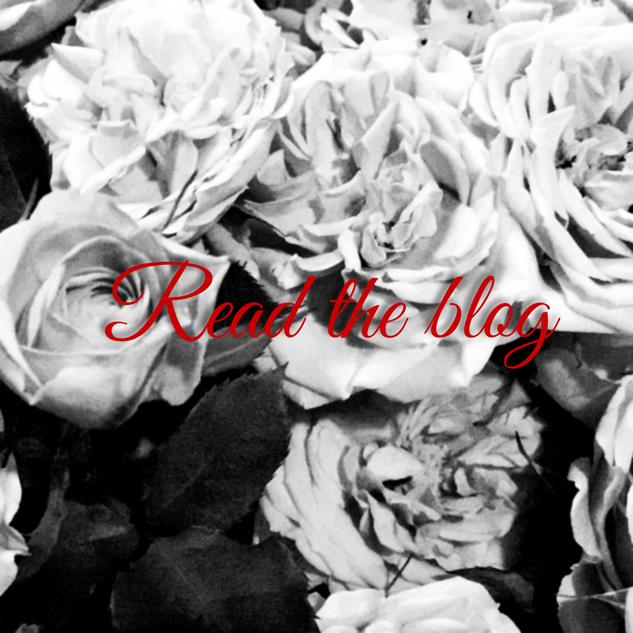 Rose Link to Blog