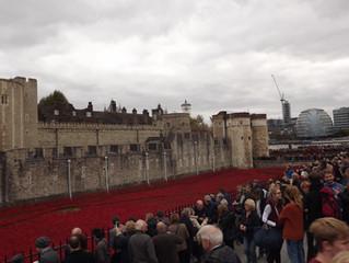 Красные маки в Лондонском Тауэре