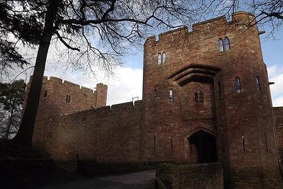 графство Честершир, замки Энтони Салвина