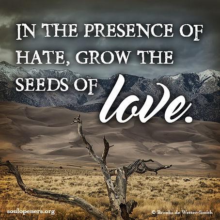 Grow seeds of love.