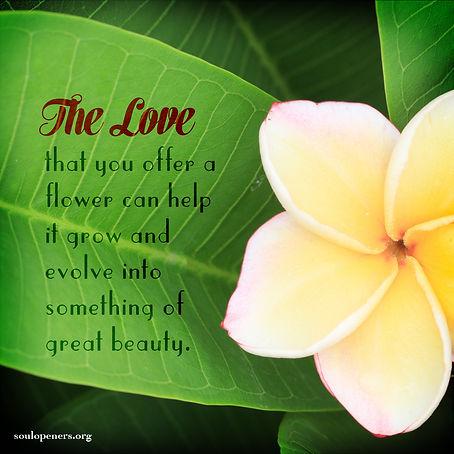 Loving a flower helps it grow.