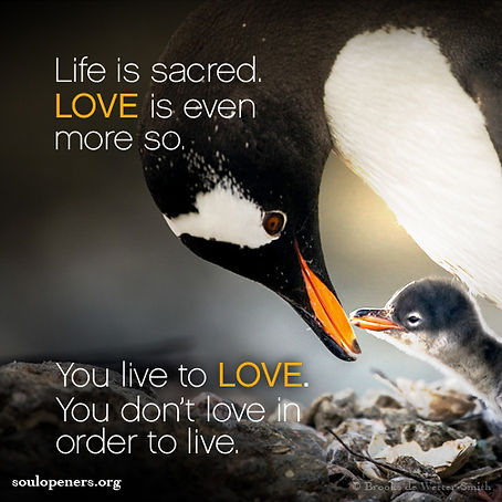 Love is sacred.