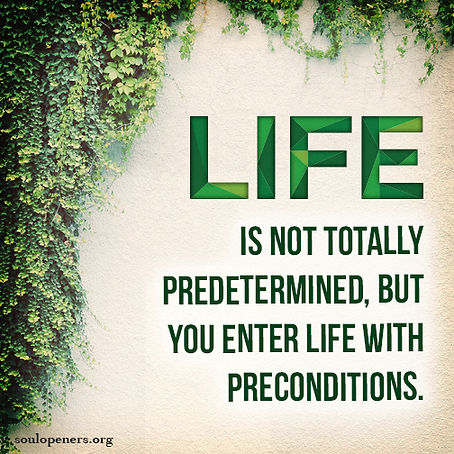 Life has preconditions.