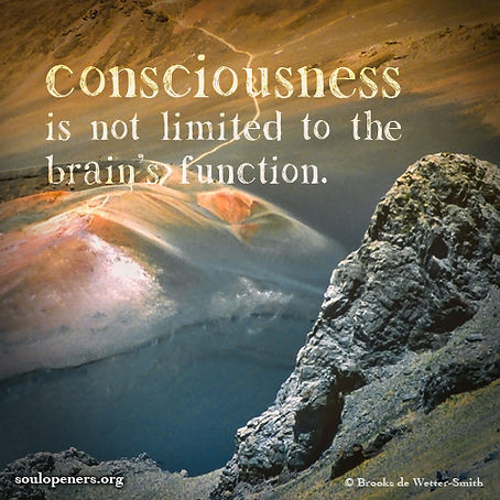 Consciousness not limited to brain.