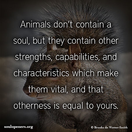 Animals don't have souls.