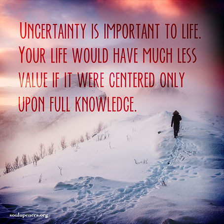Uncertainty is important.