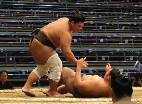 83/365今日の名言:愛嬌というのはね、自分より強いものを斃(たお)す柔かい武器だよ 夏目漱石
