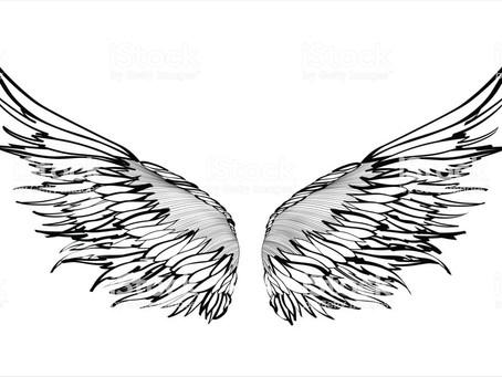 82/365今日の名言:幸福には翼がある。それをつなぎとめておくことは難しいのだ。シラー