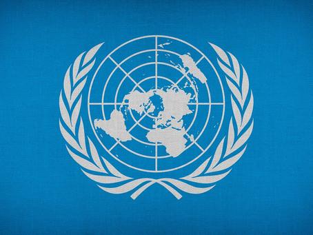 SDGs(エスディージーズ)と取り組み #349