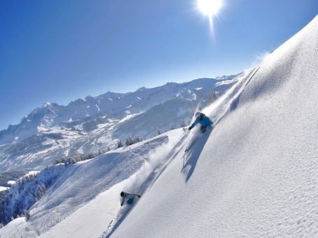 Ski Holidays in the French & Swiss Alps